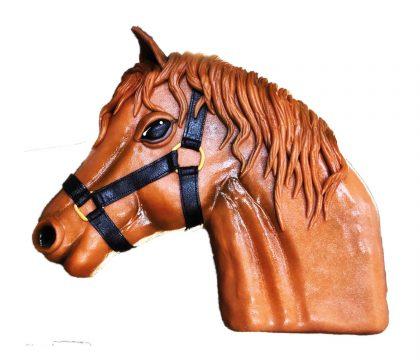 tete cheval SITE